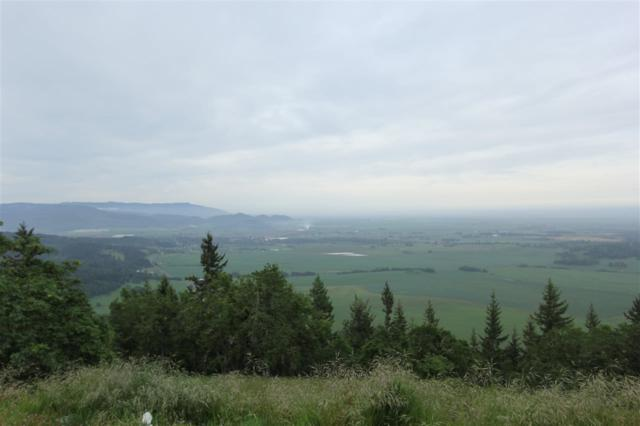 Washburn Heights (Lot #18), Brownsville, OR 97327 (MLS #725192) :: Gregory Home Team