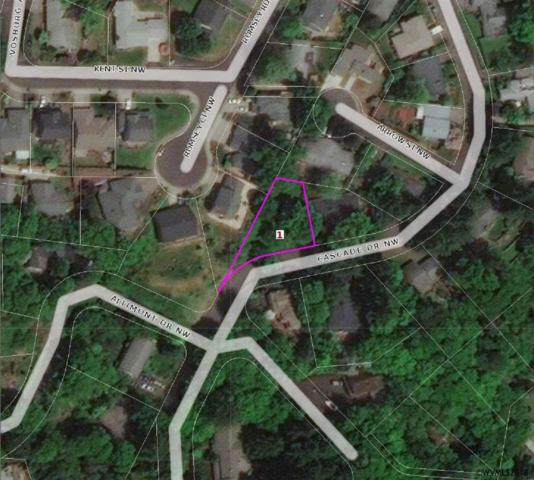 825 Cascade (Next To Lot) NW, Salem, OR 97304 (MLS #730741) :: HomeSmart Realty Group