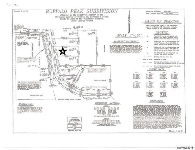 Lot 204 E Fulton, Union, OR 97883 (MLS #733704) :: HomeSmart Realty Group