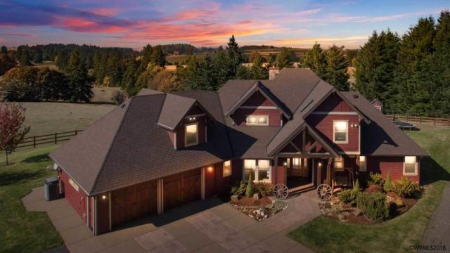 15195 Waldo Hills Dr SE, Sublimity, OR 97385 (MLS #740120) :: HomeSmart Realty Group