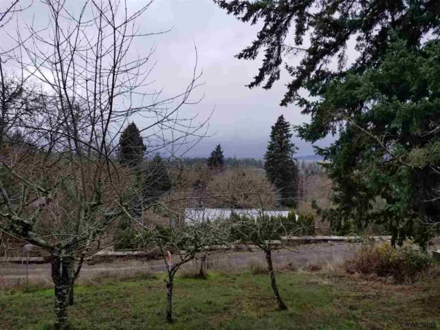 Holiday (Blk 2500) S, Salem, OR 97302 (MLS #742555) :: HomeSmart Realty Group