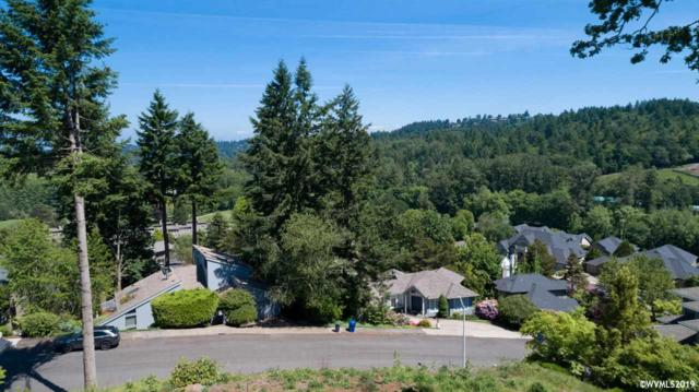 3436 Cherokee S, Salem, OR 97302 (MLS #749285) :: Hildebrand Real Estate Group