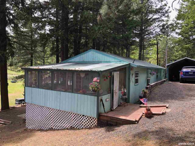 312 Oak Park Ln, Tygh Valley, OR 97063 (MLS #749794) :: Hildebrand Real Estate Group