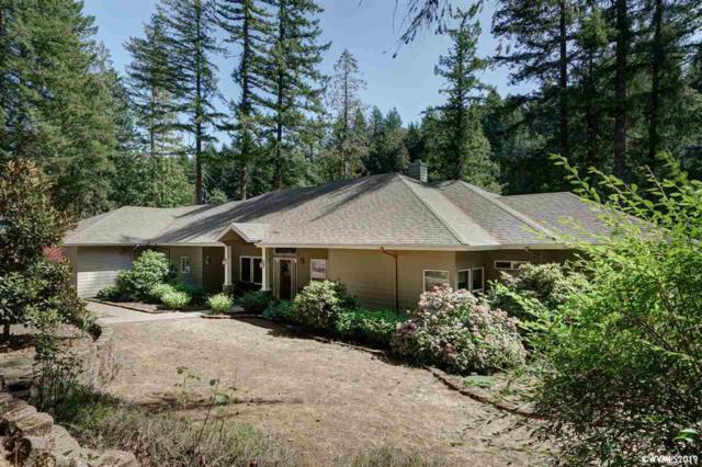 35250 North Santiam Hwy, Gates, OR 97346 (MLS #750785) :: Gregory Home Team