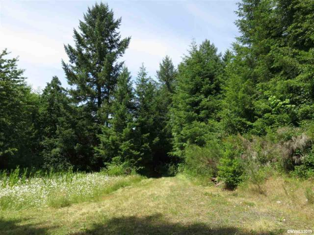 Treehouse (Lot #931), Monmouth, OR 97361 (MLS #750973) :: Gregory Home Team