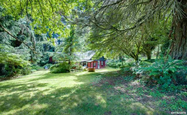 941 SE Silver Falls Dr, Silverton, OR 97381 (MLS #751304) :: Gregory Home Team