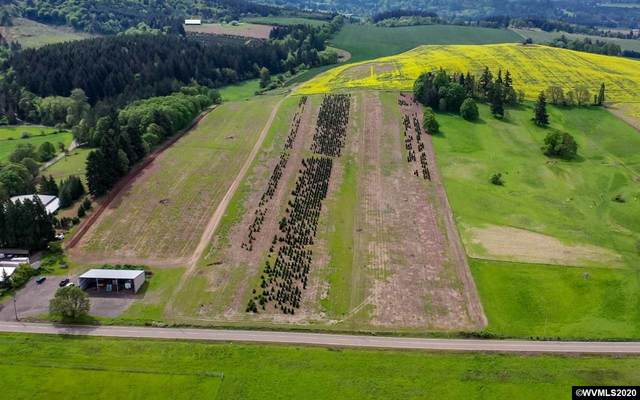 9900 S Wildcat (Next To ), Molalla, OR 97038 (MLS #769952) :: Premiere Property Group LLC