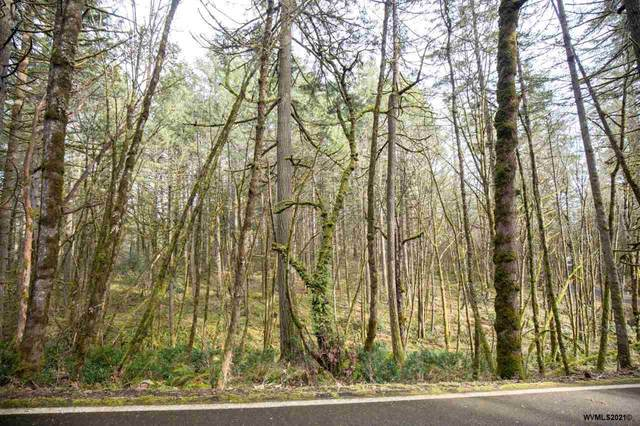 Overlook (Lot #7), Corvallis, OR 97330 (MLS #774495) :: The Beem Team LLC