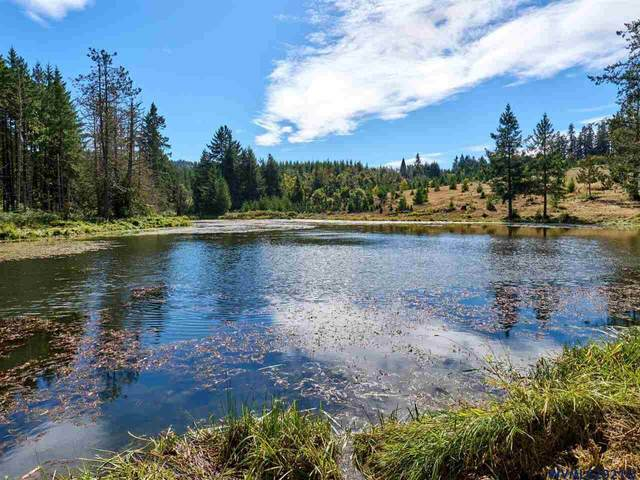 6274 Crooked Finger Rd, Scotts Mills, OR 97375 (MLS #777370) :: Premiere Property Group LLC