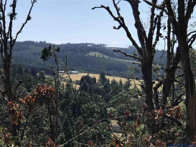 Woodland Heights (Lot#2), Amity, OR 97101 (MLS #780906) :: Oregon Farm & Home Brokers