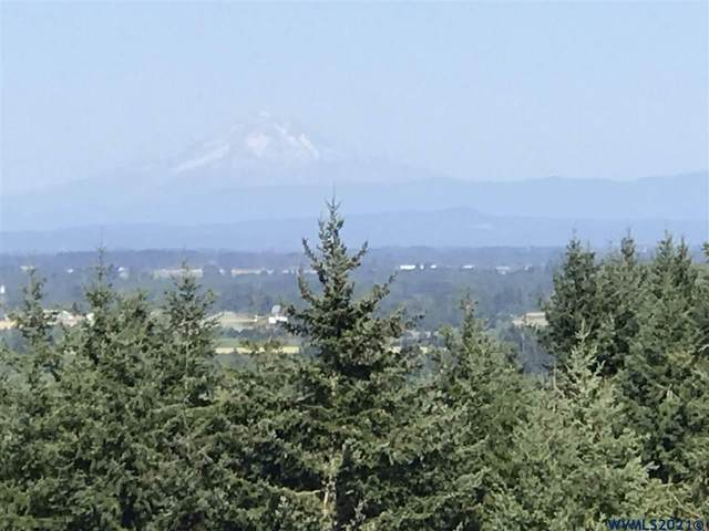 Woodland Heights Lot 2 P2020-25, Amity, OR 97101 (MLS #780910) :: Premiere Property Group LLC