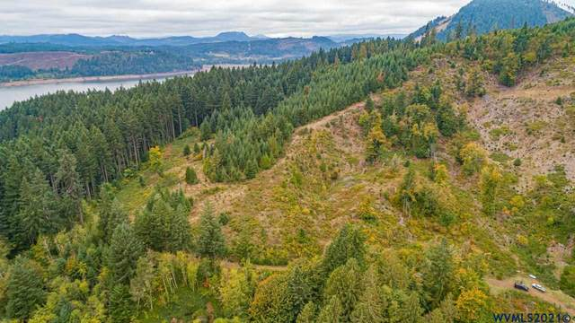 78312 Rat Creek *Next To, Cottage Grove, OR 97424 (MLS #783120) :: Triple Oaks Realty