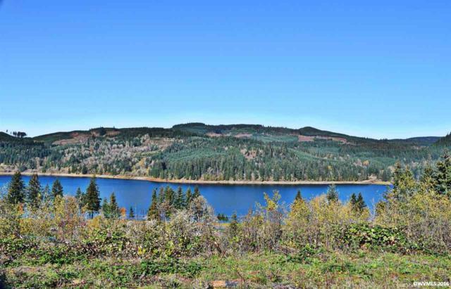 6320 Lake Pointe, Sweet Home, OR 97345 (MLS #711829) :: HomeSmart Realty Group