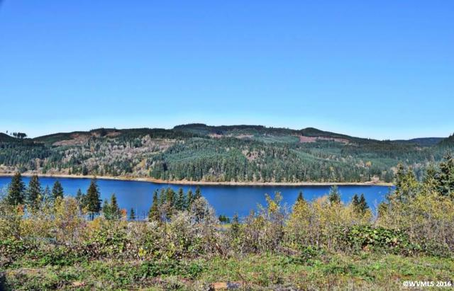 6335 Lake Pointe, Sweet Home, OR 97345 (MLS #711838) :: HomeSmart Realty Group