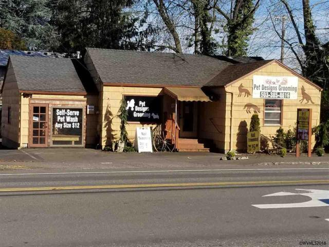 2784 12th SE, Salem, OR 97302 (MLS #730205) :: HomeSmart Realty Group