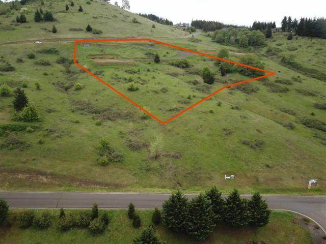 Hawk Hill (Lot #7), Philomath, OR 97370 (MLS #704037) :: Sue Long Realty Group