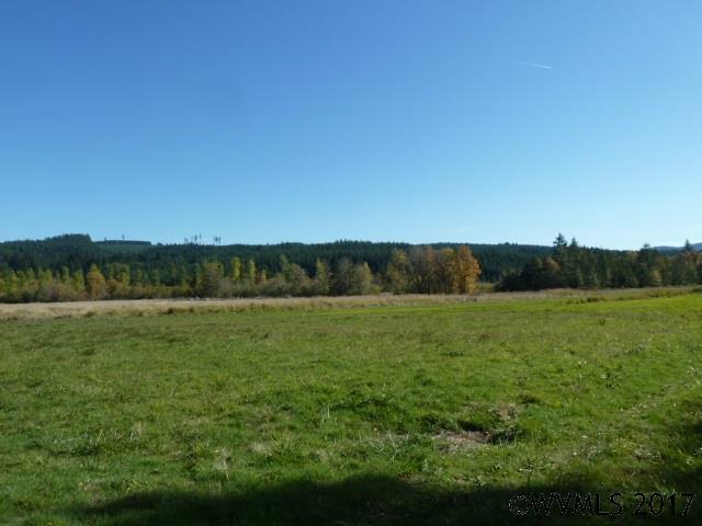 21466 Highway 20 (Next To), Philomath, OR 97370 (MLS #725603) :: Sue Long Realty Group