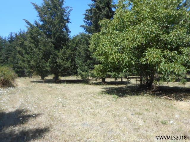 7744 Fanny SE, Aumsville, OR 97325 (MLS #736884) :: HomeSmart Realty Group