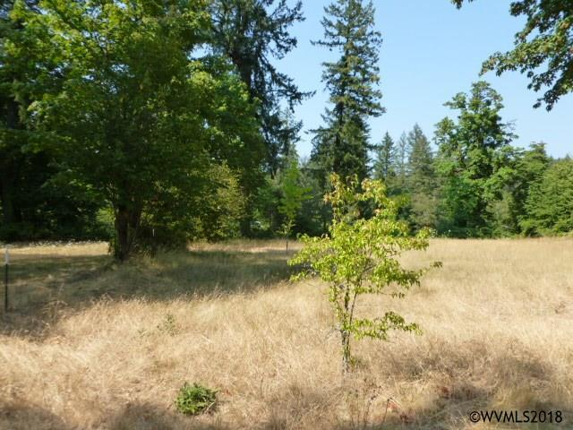 1345 SW Spring (Next To), Mill City, OR 97360 (MLS #737669) :: HomeSmart Realty Group