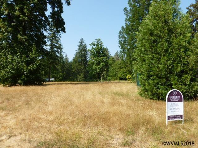 1345 SW Spring, Mill City, OR 97360 (MLS #737701) :: HomeSmart Realty Group