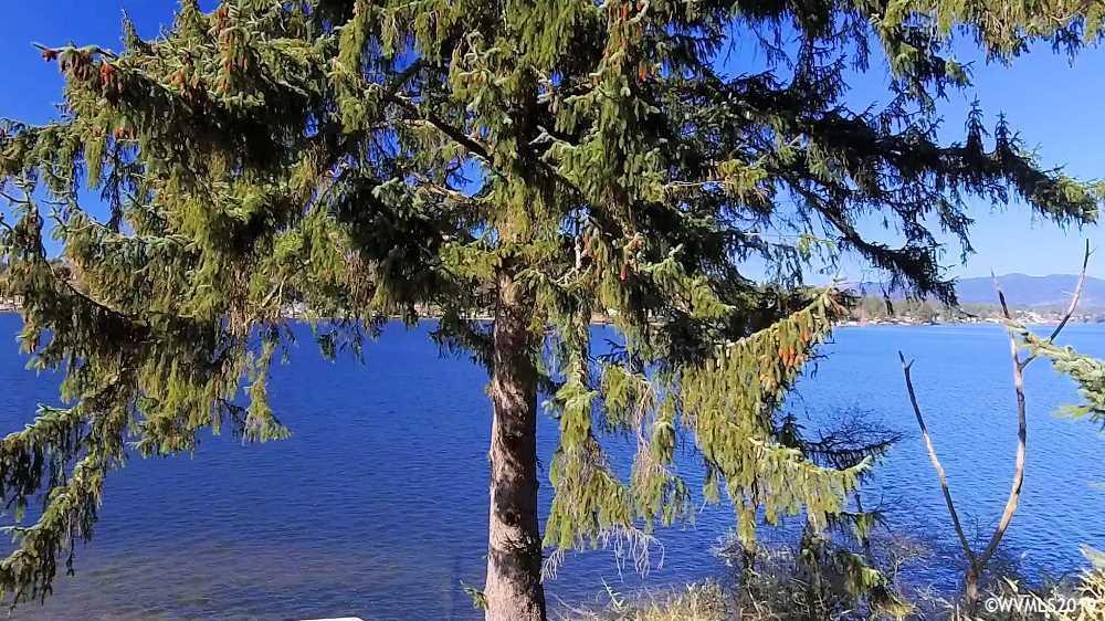 East Devils Lake (Tl #405) - Photo 1