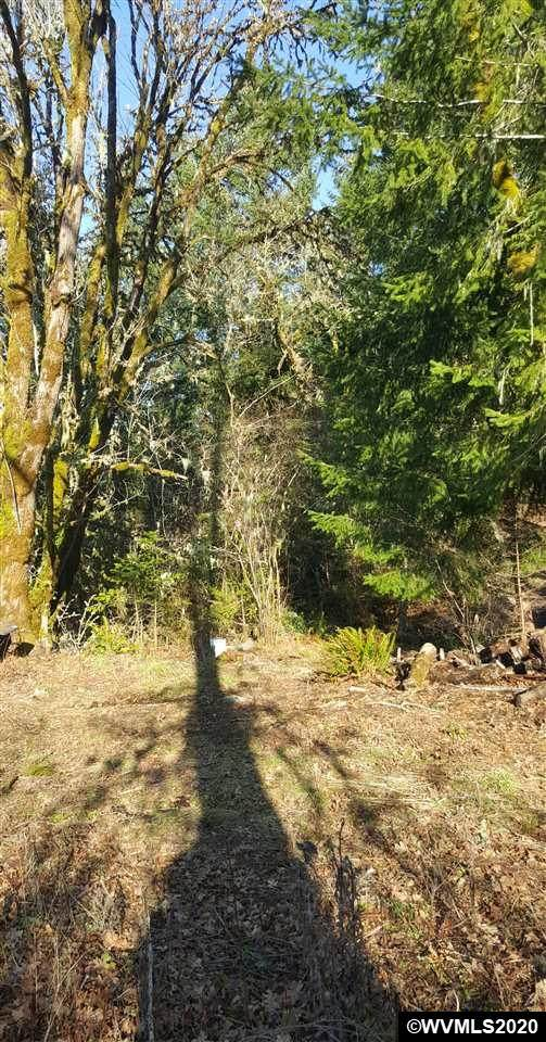 27790 Mcpherson, Grand Ronde, OR 97347 (MLS #760361) :: Hildebrand Real Estate Group