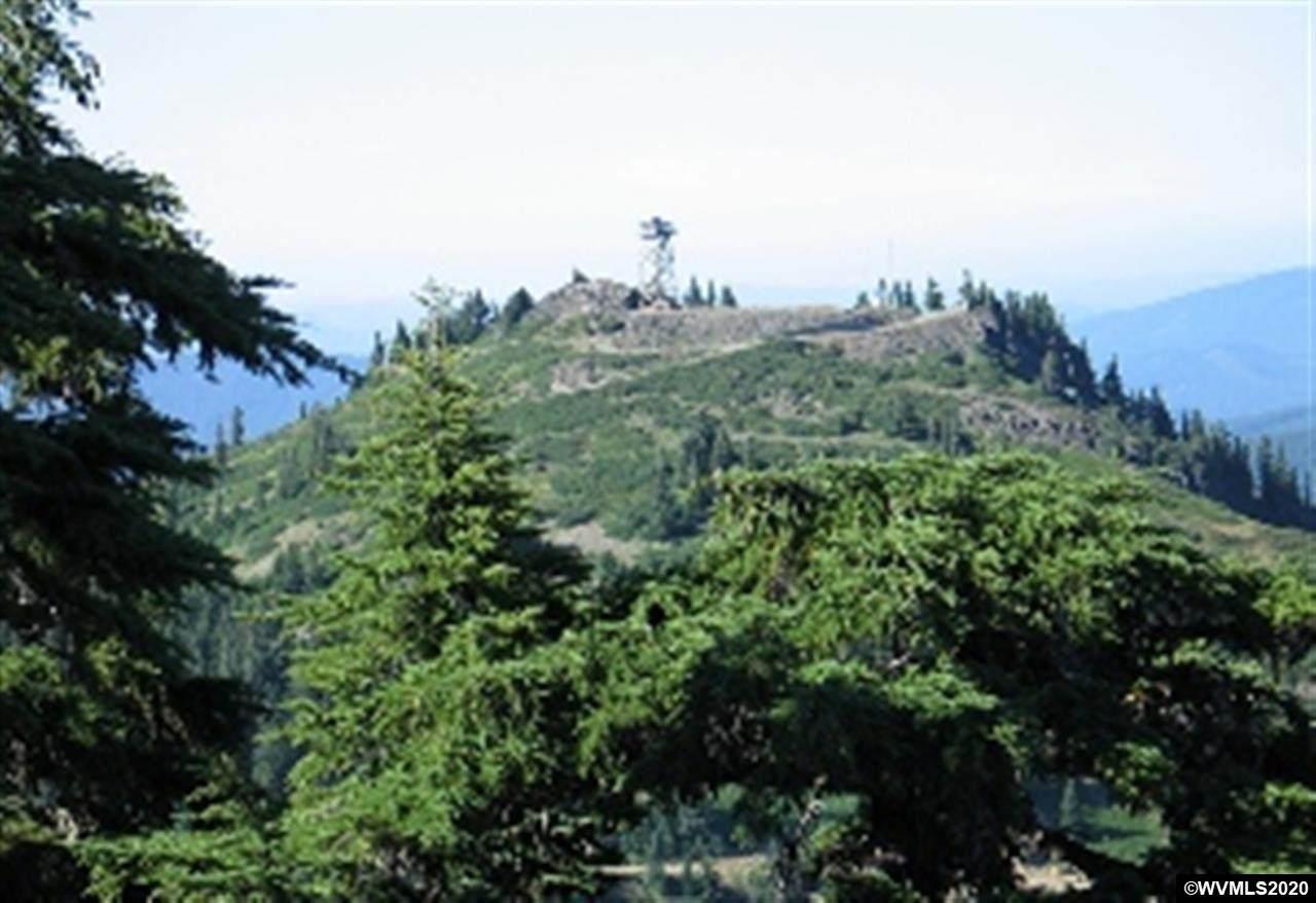 MS#443 Fairview Peak - Photo 1