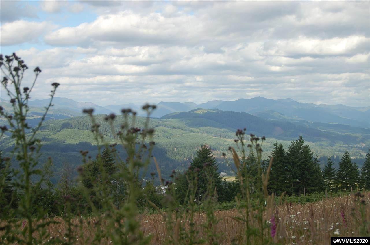 40593 Mccully Mountain (Next To, Parcel 2) - Photo 1