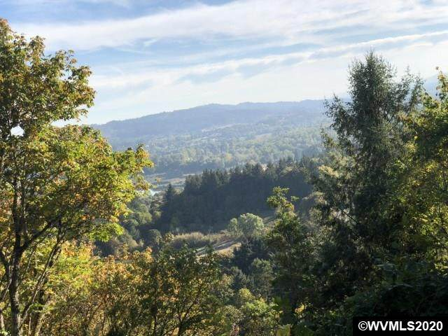 3568 Lower Autumn NW, Salem, OR 97304 (MLS #764362) :: Coho Realty