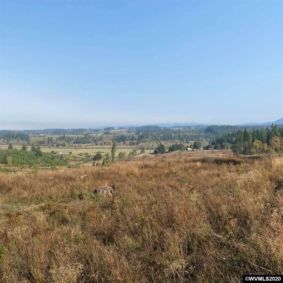 Keel Mountain (Lot #1300) - Photo 1