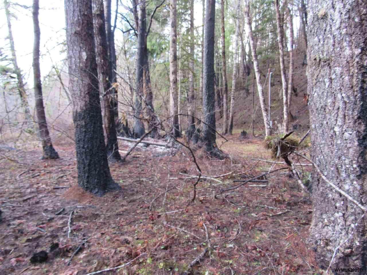 Parcel64326 North Fork - Photo 1