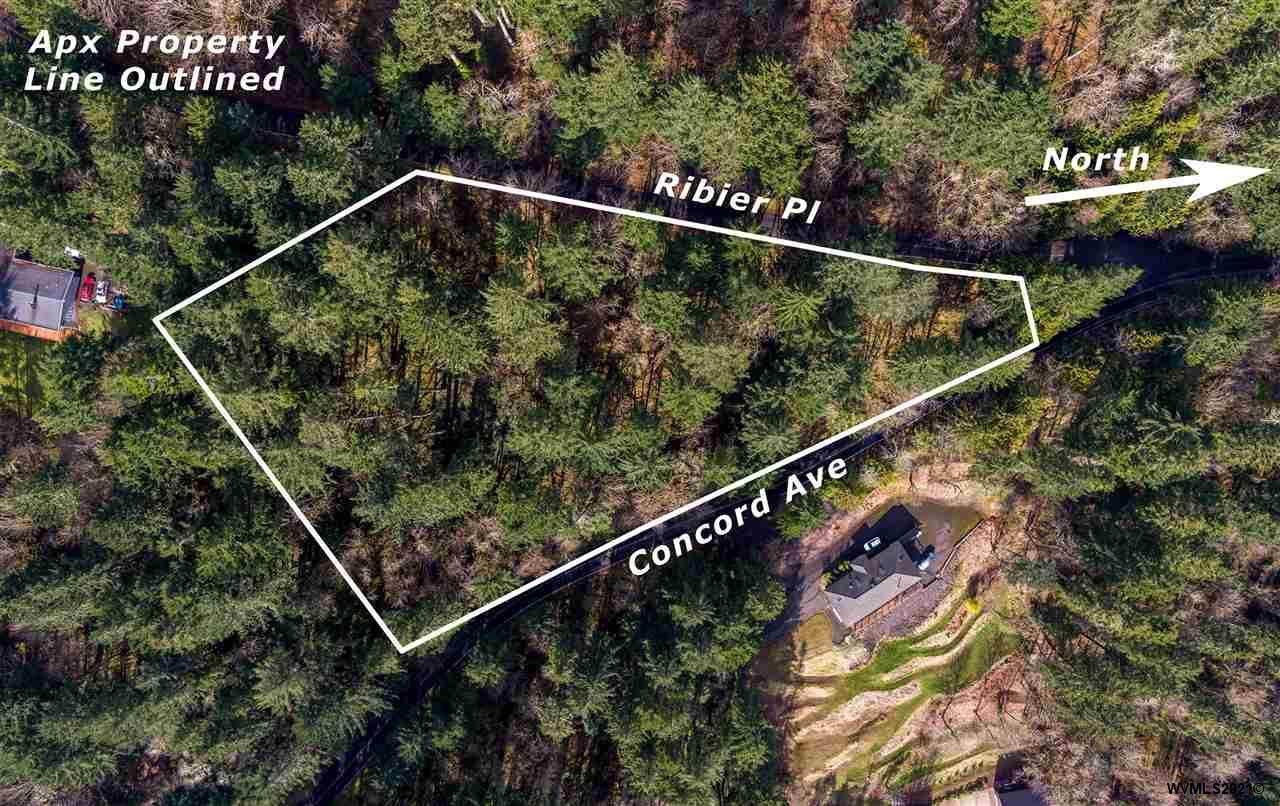 Ribier & Concord (Corner Of) - Photo 1