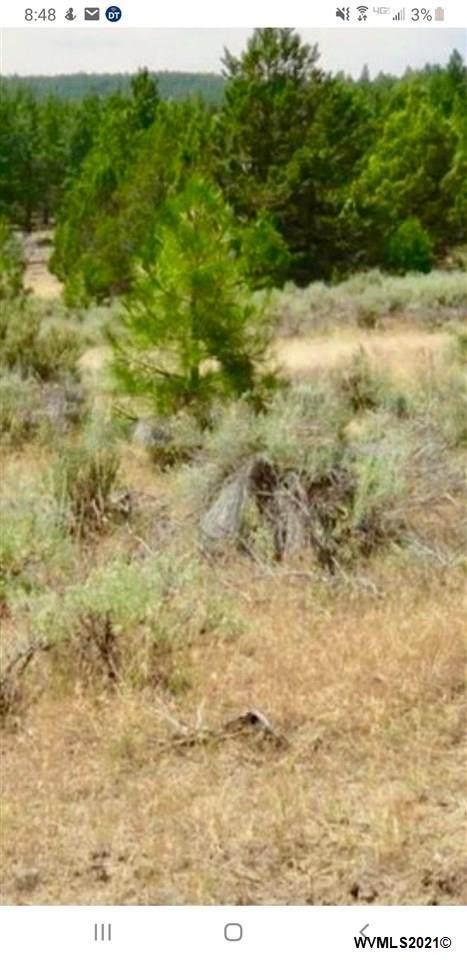 Lot 2 Deer Springs - Photo 1