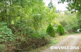 606 Oak (Behind), Silverton, OR 97381 (MLS #701136) :: HomeSmart Realty Group