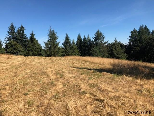 3950 Victor Point NE, Silverton, OR 97381 (MLS #737118) :: HomeSmart Realty Group