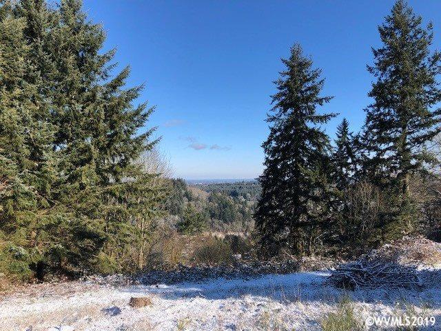 4050 Victor Point, Silverton, OR 97381 (MLS #743882) :: HomeSmart Realty Group