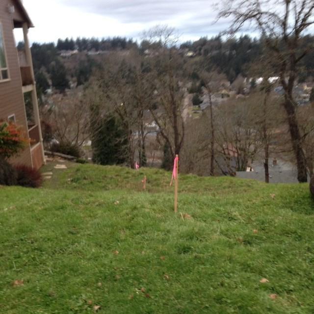 633 Kloshe, Silverton, OR 97381 (MLS #714161) :: HomeSmart Realty Group
