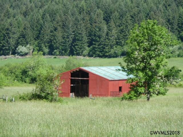 22451 Highway 20 (Next To), Philomath, OR 97370 (MLS #734460) :: HomeSmart Realty Group