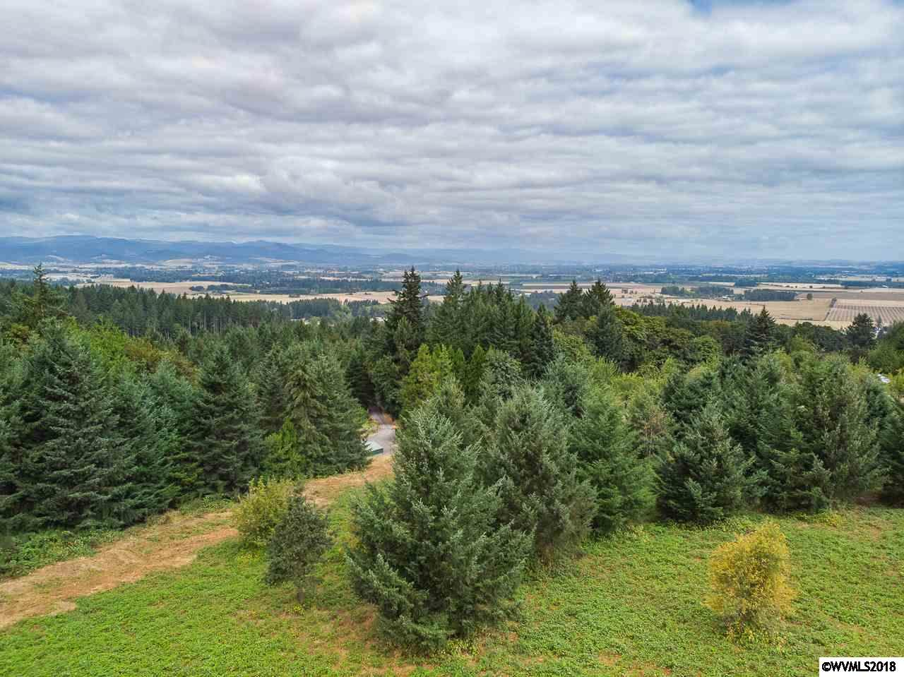 Hillview (Lot #59) - Photo 1
