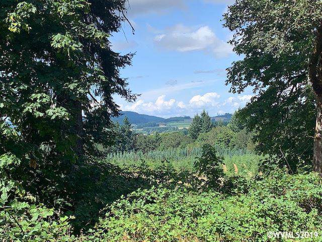 Smittys, Monroe, OR 97456 (MLS #752259) :: Sue Long Realty Group