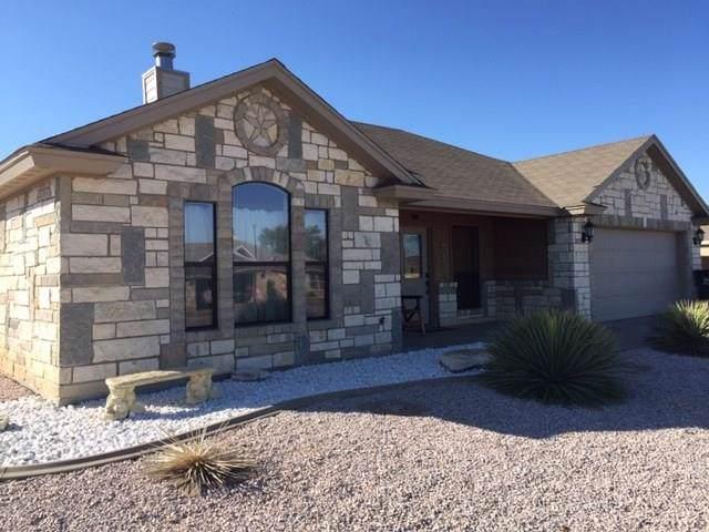7709 Elk Run, San Angelo, TX 76901 (MLS #99403) :: Maegan Brest | Keller Williams Realty