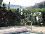 14946 Rancho Real - Photo 22
