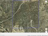 40 acres Star Ranch Rd - Photo 5