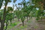 1238 Via Rancho Pkwy - Photo 23