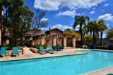 11382 Via Rancho San Diego - Photo 23
