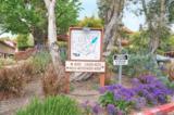 4029 Carmel View Rd - Photo 3
