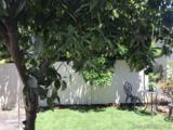 9255 Magnolia Ave - Photo 9
