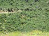 13895 Boulder Creek Rd - Photo 15