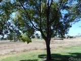 25691 Cherry Hills Blvd - Photo 16