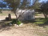 33728 Shockey Truck Trail - Photo 16
